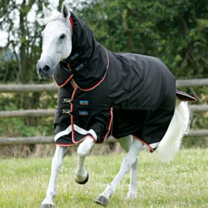 Horse Rugs