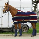 Rhinegold Elite Fleece, Fleece rug, smart fleece