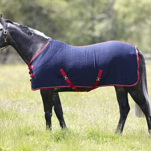 wickaway, thermatex, cooler, travel rug