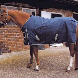 outdoor rug, ideal stable rug, turnout rug, winter rug, equine , horse rugs,