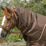 Premier Equine Titan 300 turnout, premier equine, Titan 300, turnout, waterproof