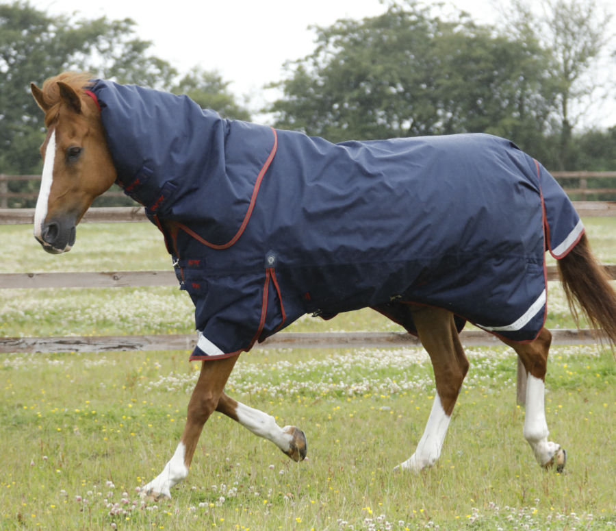 winter, turnout rug, Titan 450, premier equine