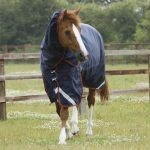 Premier Equine Titan 450 turnout rug, PE Titan, Titan turnout, waterproof horse rug, heavy weight horse rug, winter horse rug, Premier Equine