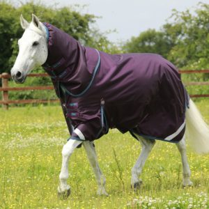 premier equine, Titan 200, Winter turnout, Quality turnout, waterproof, premier equine titan 200 turnout