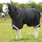 Premier Equine, Titan 100, Black
