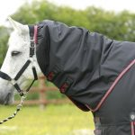 Premier Equine Titan 100 turnout Rug, Premier Equine, Titan 100, Lightweight, Turnout rug, waterproof, lightweight waterproof, horse rug,