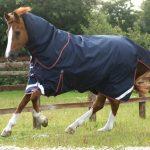 Premier Equine, Winter, Turnout, Lightweight rug, Titan 100