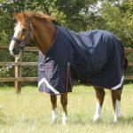 Premier Equine, Titan 100, Lightweight, Turnout rug