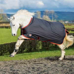 Equisential Medium Weight Turnout Rug,Turnout Standard Medium, equisential, horse rug, turnout rug, equestrian rugs, winter, autumn rug, spring rug, navy red, durable, mackey,value for money,
