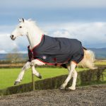 equisential, turnout rug, equestrian rugs, outdoor rug, 600denier, waterproof, durable, breathable,