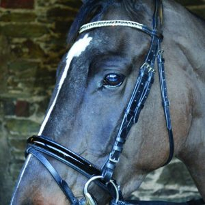 Black Leather Comfort Bridle, black patent, hand stitched, leather bridle, leather comfort bridle, Celtic equine, equestrian tack, horse bridles, supple leather,