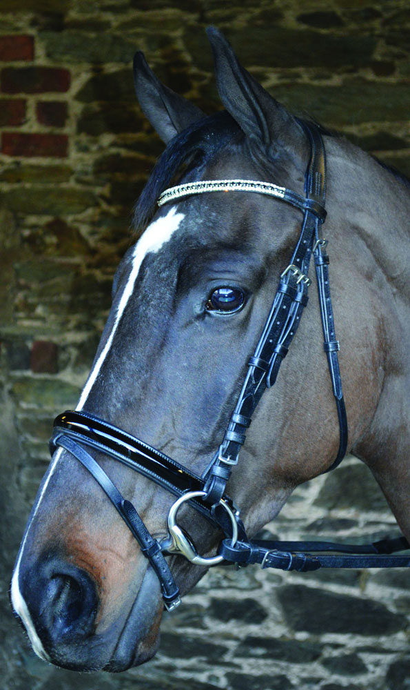 black patent, hand stitched, leather bridle, leather comfort bridle, Celtic equine, equestrian tack, horse bridles, supple leather,