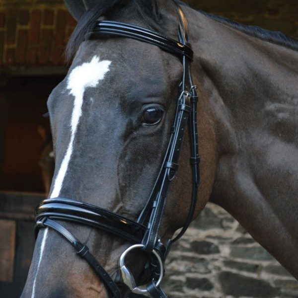 black patent leather bridle, Eclipse patent leather bridle, bridle with reins, padded headpice, soft grip reins, celtic equine, pony bridle, horse bridle, equestrian tack, leather horse tack, competition, show, b ling bridle,