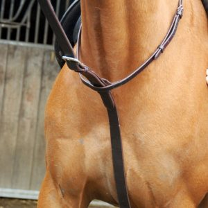 polo bridles, standing martingale, full grain leather, leather, real leather, well made, polo tack, polo ponies, equestrian, leatherwork,
