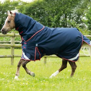 Premier Equine Titan Pony 100, Premier Equine, Titan 100, Lightweight waterproof, turnout rug, horse rug, comfort fit horse rug