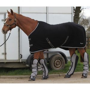 Rhinegold Elite Indoor Fleece Rug