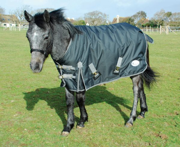 Foal rug, pony rug, outdoor foal rug, pony turnout,