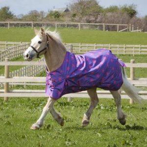 lightweight, turnout, pink stars, outdoor rug