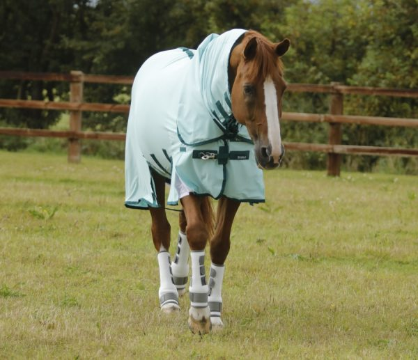 premier equine classic stratus fly rug, Classic Stratus Fly Sheet, fly sheet, premier equine, stratus fly sheet, stratus fly rug, fly rug