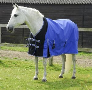 waterproof rug, rhinegold elite storm rug with waterproof stretch chest panel neck cover, horse clothing, horse rugs, comfort, sapphire blue,